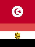 Soutien aux peuples tunisien et égyptien